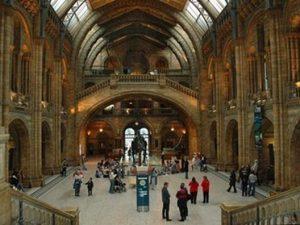 Fantastiska museum!